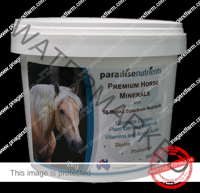 Premium Horse Minerals-1a