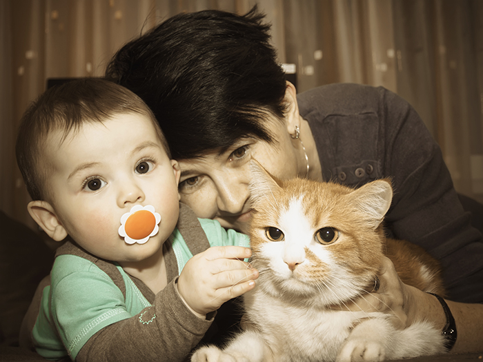 Caucasian family mother and baby playing with red cat