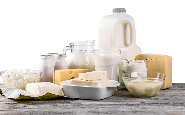dairy products-1